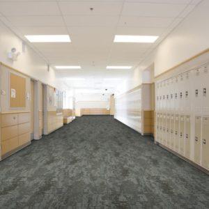 Thảm trải sàn chống bám bụi 9
