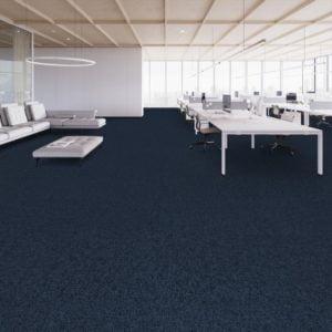 Thảm trải sàn phòng học 7